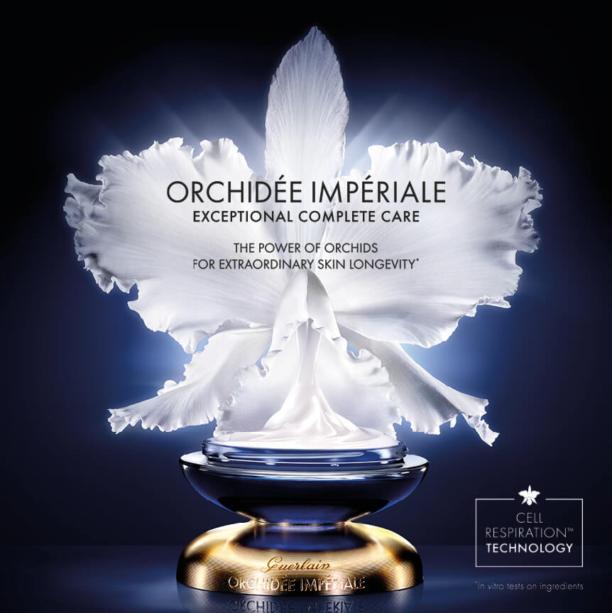 ORCHIDEE IMPERIALE